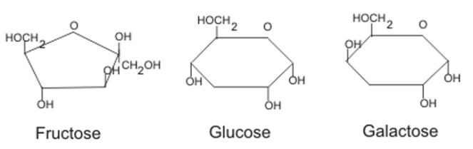 Monosaccharide-Structure